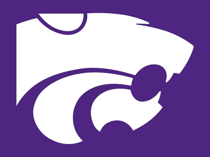purple wildcat